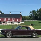 1966 Ford Mustang Ivy Green Metallic With Parchment Interior No Reserve Classic Ford Mustang 1966 For Sale