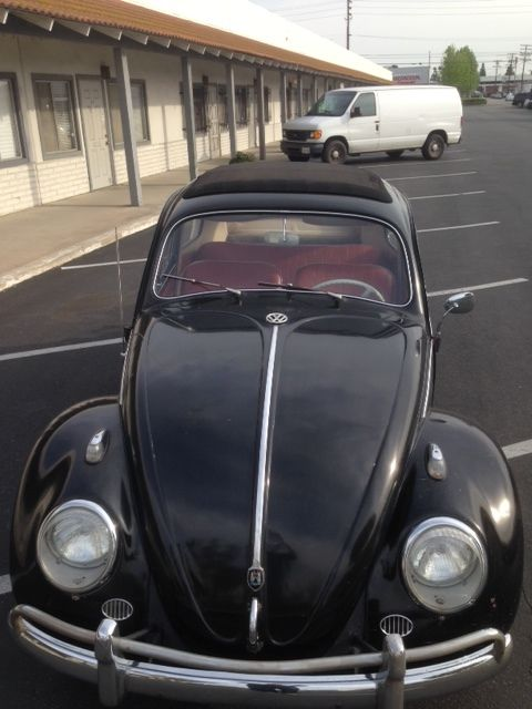 volkswagen bug ragtop vw sunroofbeetle  oval  split classic