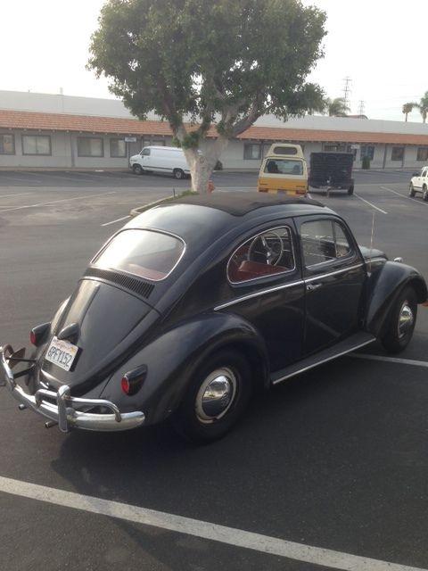 Volkswagen Bug Ragtop Vw Sunroofbeetle Oval Split