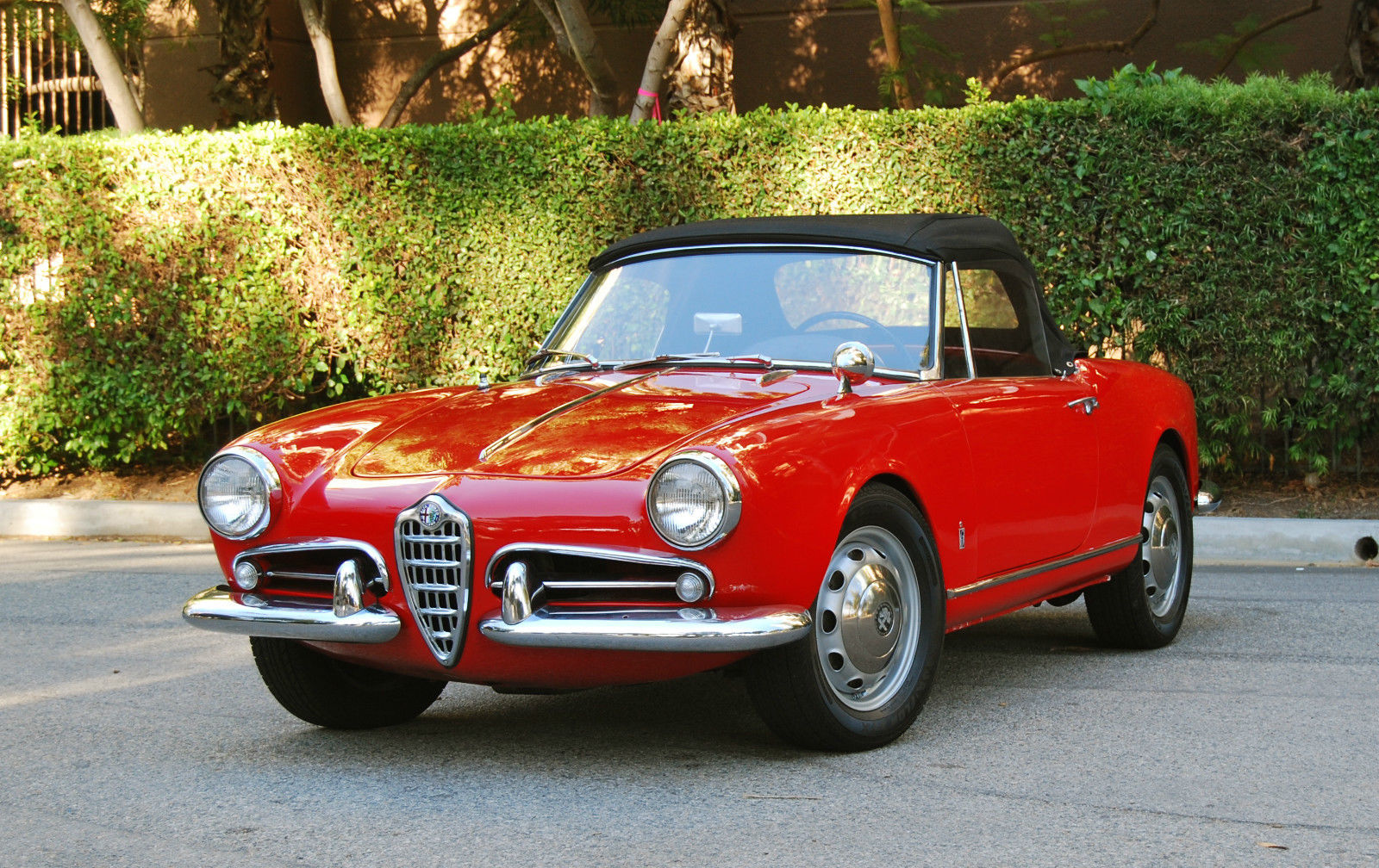 1961 alfa romeo giulietta spider 1600cc 5 speed. Black Bedroom Furniture Sets. Home Design Ideas