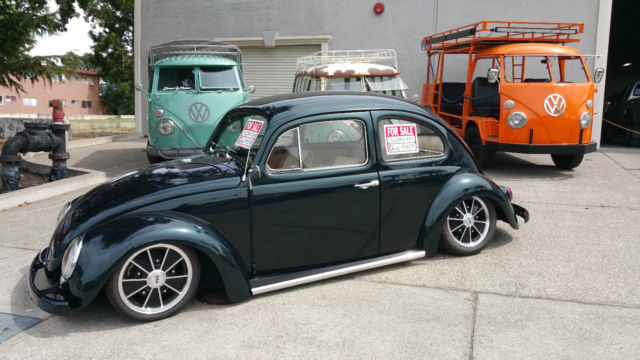 beetle show quality bagged classic bug classic volkswagen beetle classic   sale