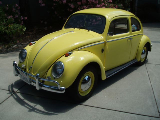 1963 Volkswagen Beetle California Car Rust Free Immaculate In Out 30 Mpg