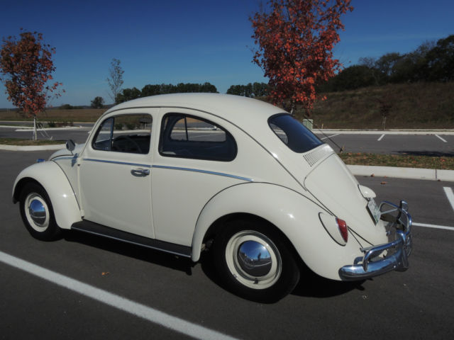 1963 vw beetle one owner 52k miles great daily driver classic volkswagen beetle classic 1963. Black Bedroom Furniture Sets. Home Design Ideas