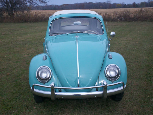 vw bug classic rag top classic volkswagen beetle classic   sale