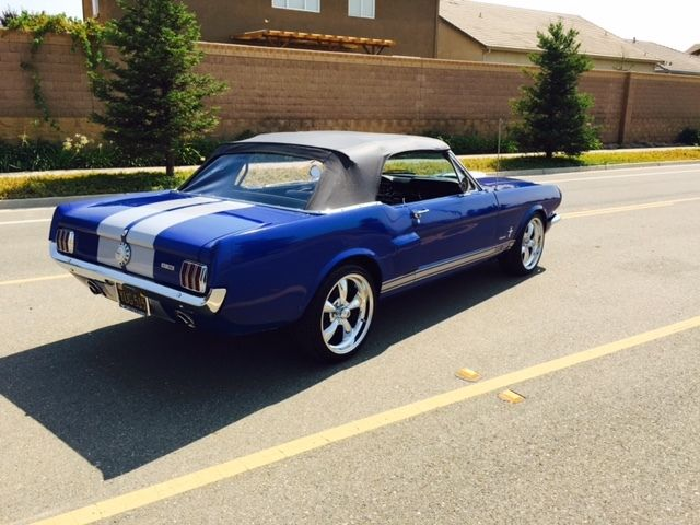 1965 66 67 Ford Mustang Convertible Fastback Combo 289