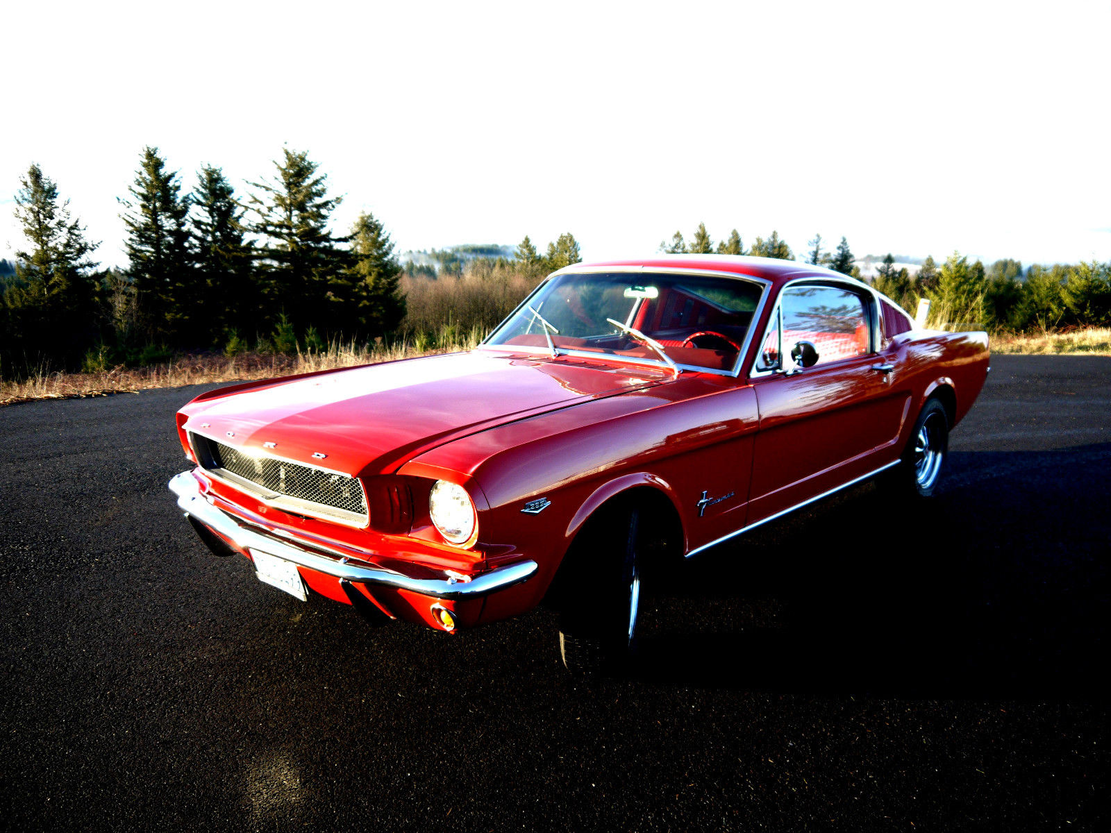 1965 mustang fastback 4 speed manual pony interior no reserve