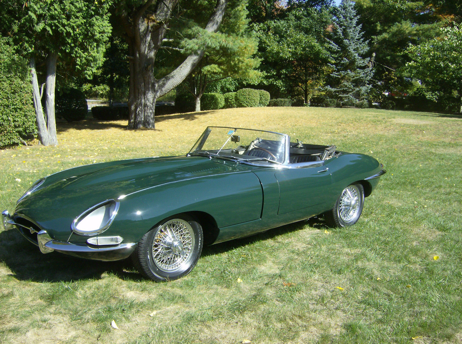 1966 jaguar series i 4 2 e type roadster classic jaguar. Black Bedroom Furniture Sets. Home Design Ideas