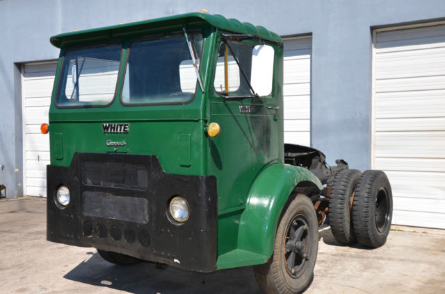 Green palm trailer - 2 6