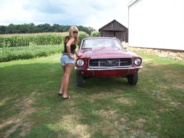 Mustang Project Car For Sale