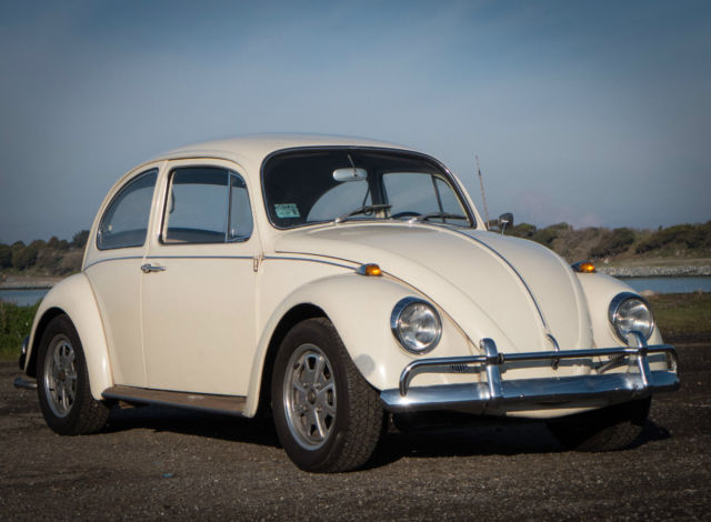 vw volkwagen beetle bug original lotus white  rust  engine classic volkswagen