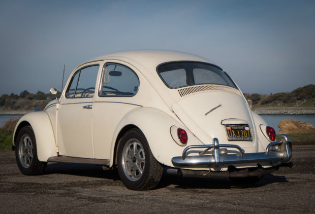 1967 VW Volkwagen Beetle Bug, Original Lotus White, No Rust, New Engine - Classic Volkswagen ...