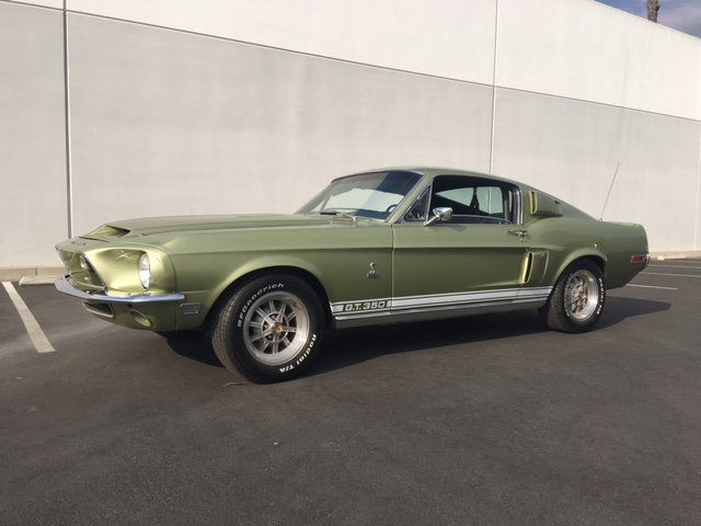 1968 shelby gt350 hertz lime gold gt 350 full history ford mustang fast back classic. Black Bedroom Furniture Sets. Home Design Ideas