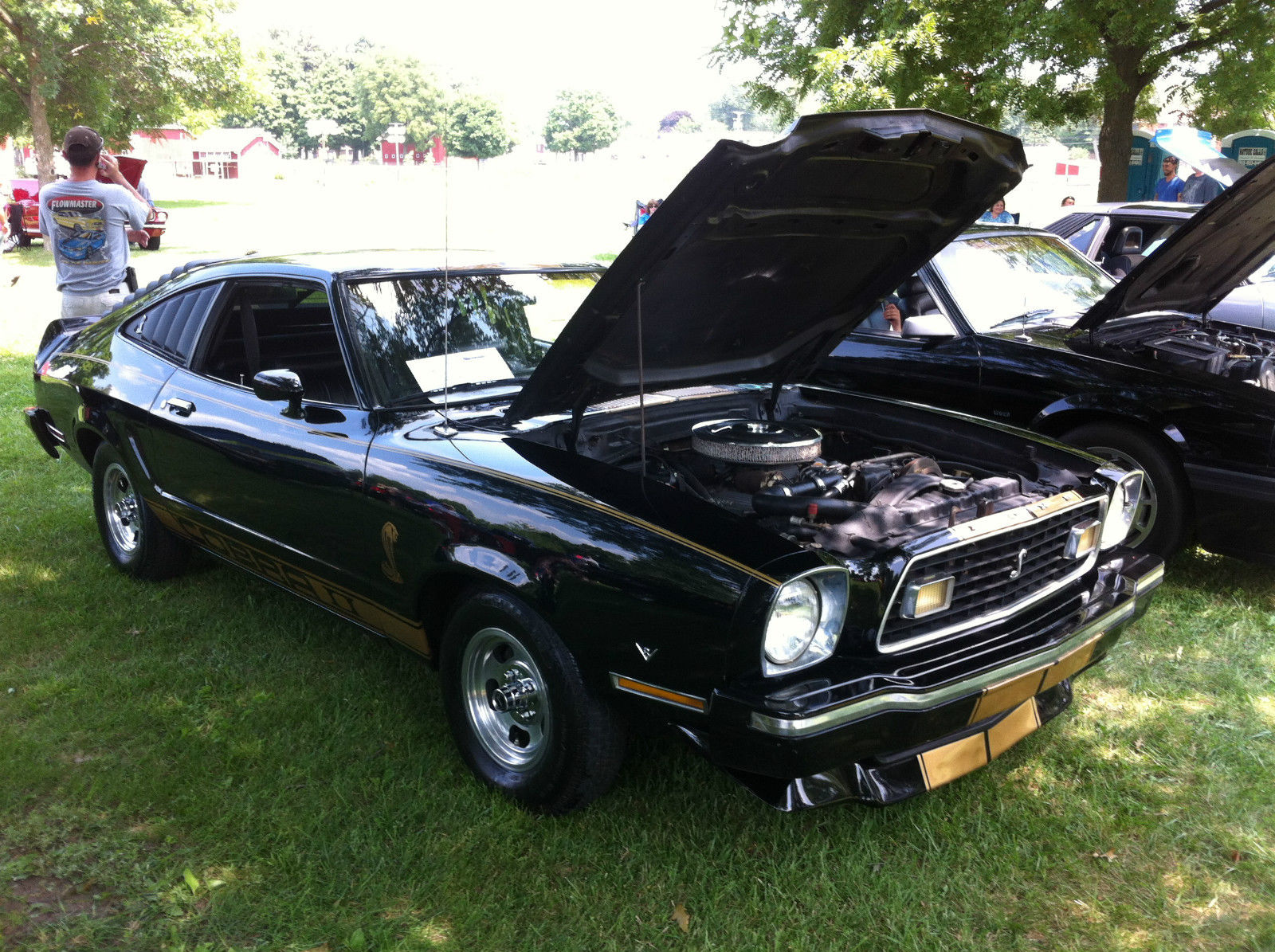 1976 ford mustang ii base hardtop 3 door 5 0l cobra black with gold stripes classic ford. Black Bedroom Furniture Sets. Home Design Ideas