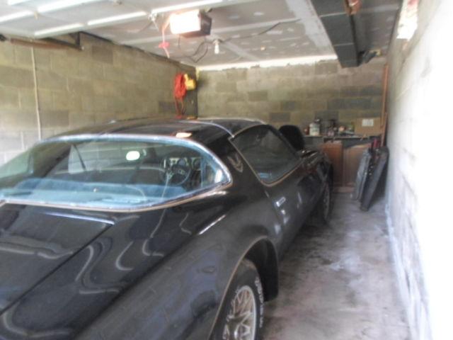 1977 Pontiac Trans Am Y82 SPECIAL EDITION Hurst Hatch T Tops 43,616