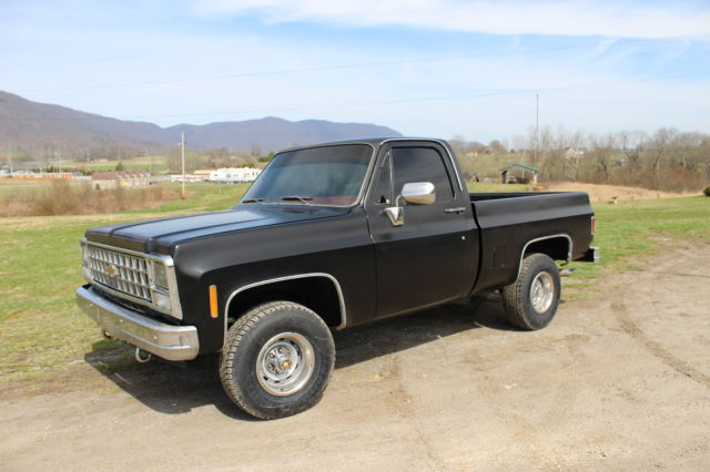1980 chevy truck swb 4x4 classic chevrolet c k pickup 1500 1980 for sale. Black Bedroom Furniture Sets. Home Design Ideas