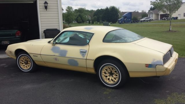 1980 pontiac firebird yellowbird trans am project 80k. Black Bedroom Furniture Sets. Home Design Ideas
