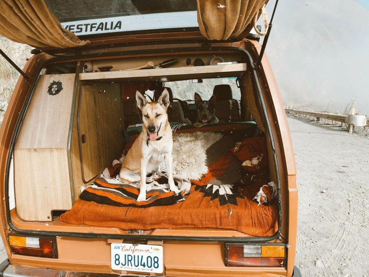 1980 VW Vanagon Westfalia Camper Van Rebuilt with Subaru ...