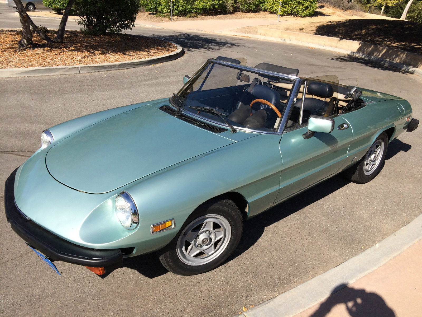 1982 alfa romeo spider veloce convertible 2 door 2 0l classic alfa romeo spider 1982 for sale. Black Bedroom Furniture Sets. Home Design Ideas