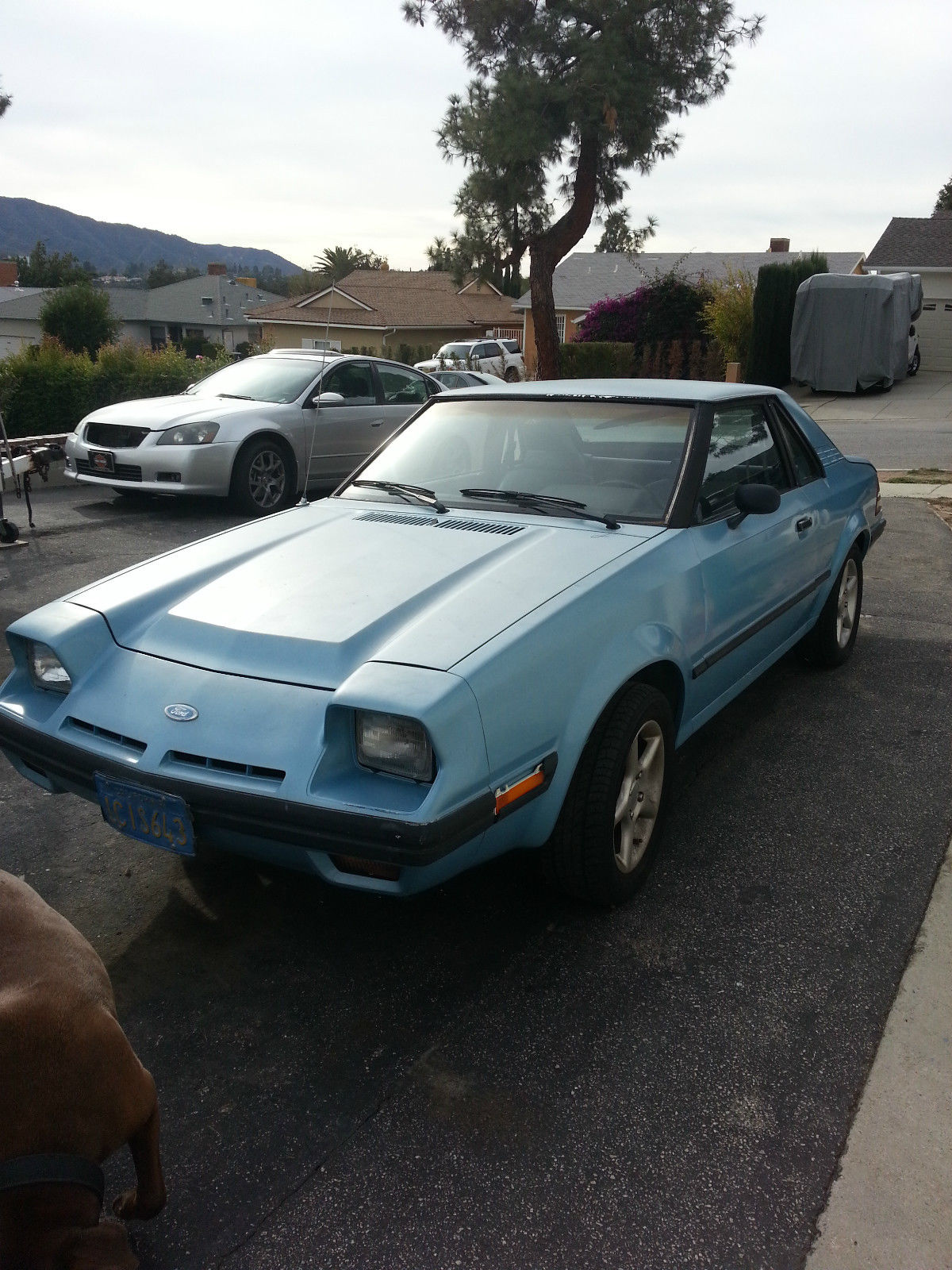 Car Vin Check >> 1982 Ford EXP Base Hatchback 3-Door 1.6L RARE COLLECTOR ...