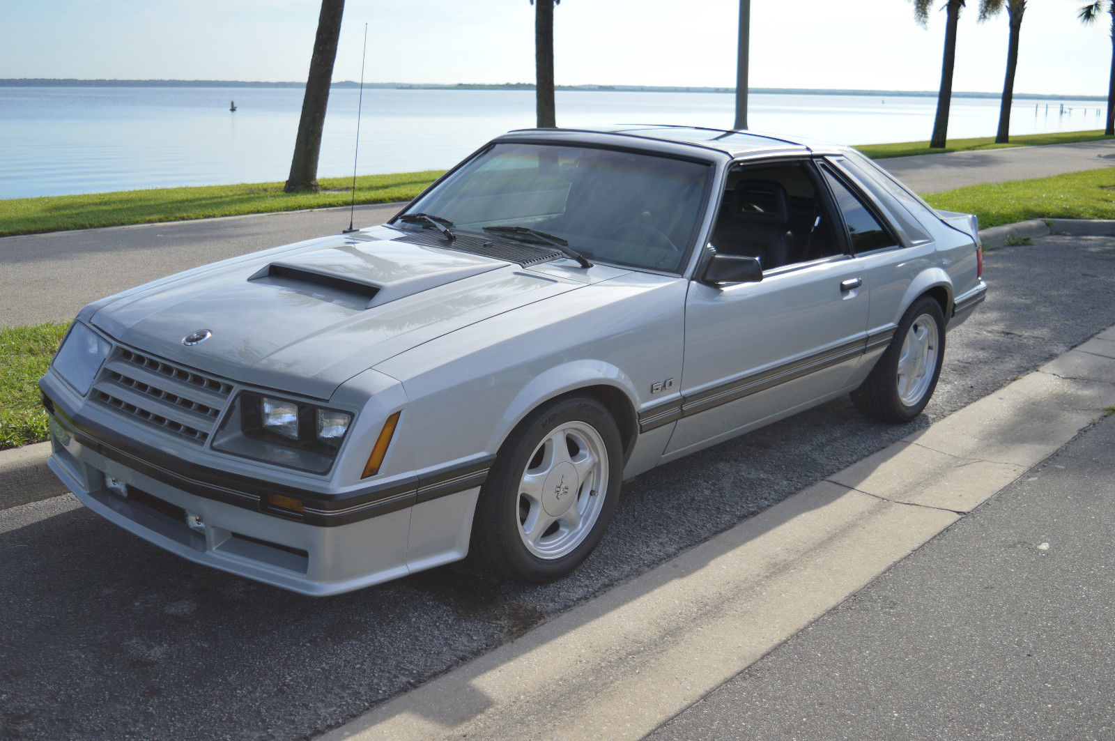 1982 mustang gt t top classic ford mustang 1982 for sale - Mustang gt ...