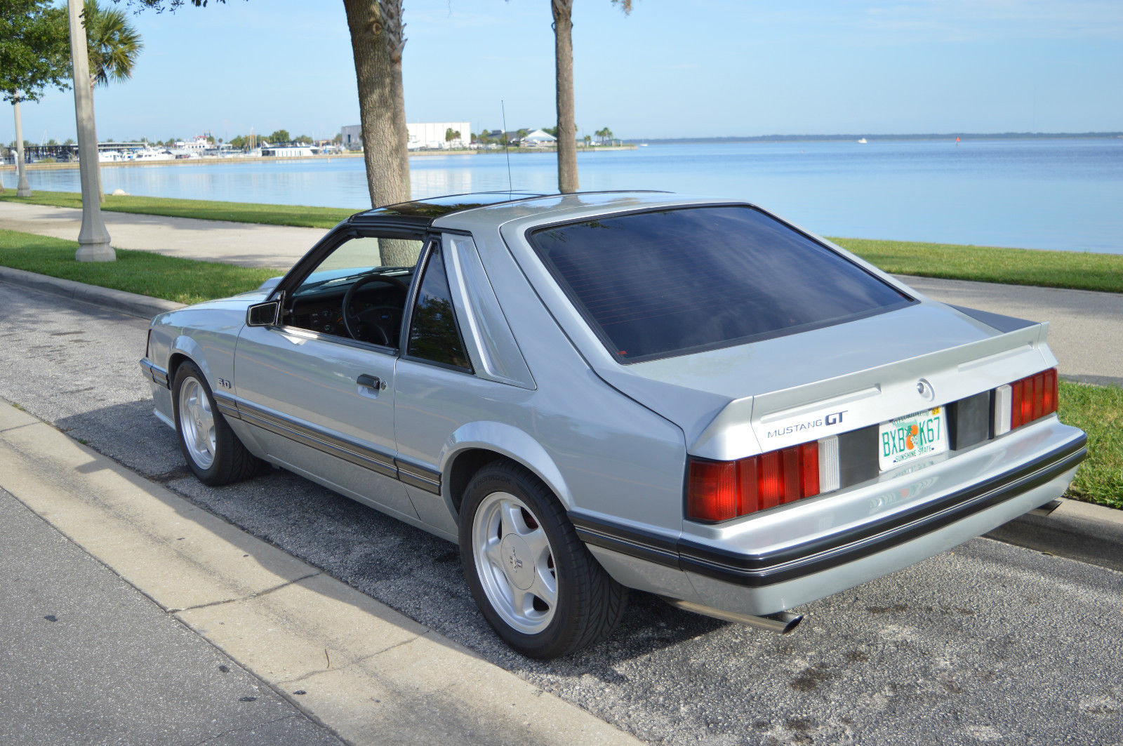 1982 Mustang Gt T Top Classic Ford Mustang 1982 For Sale