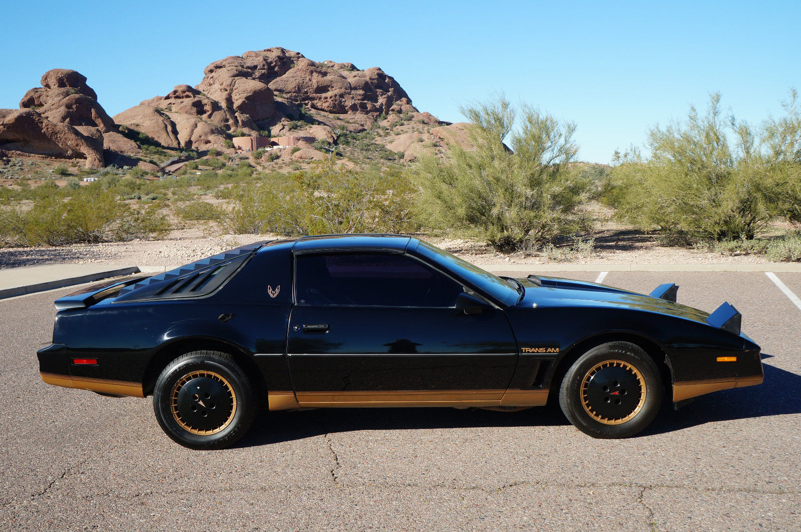 1982 Pontiac Firebird Trans Am T Tops Recaro Edition Black