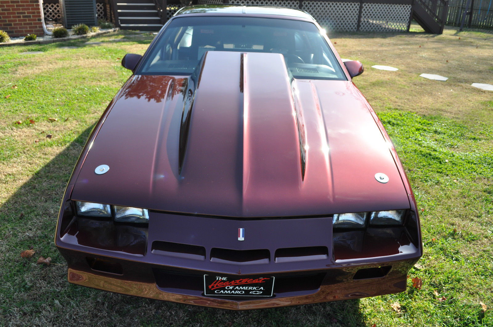 1983 chevrolet camaro pro street real street outlaw race car show car classic. Black Bedroom Furniture Sets. Home Design Ideas