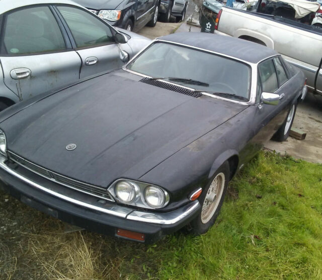 1989 Jaguar Xjs Coupe Black Tan Classic Jaguar Xjs