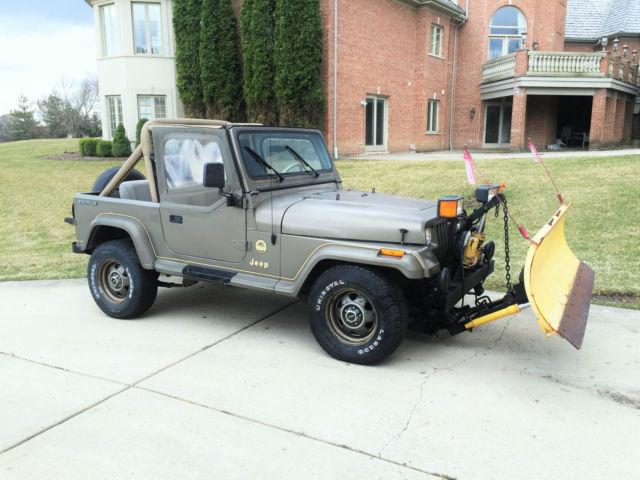 1989 jeep wrangler yj sahara 4x4 4 2l inline 6 cylinder hard top plow classic jeep wrangler. Black Bedroom Furniture Sets. Home Design Ideas