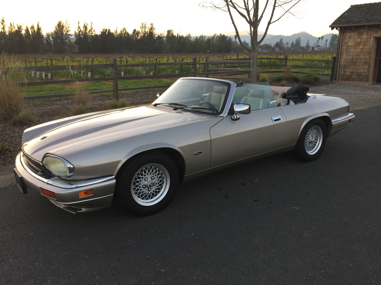 1994 jaguar xjs convertible 4 0l v6 champagne on beige leather 46k miles classic jaguar xjs. Black Bedroom Furniture Sets. Home Design Ideas