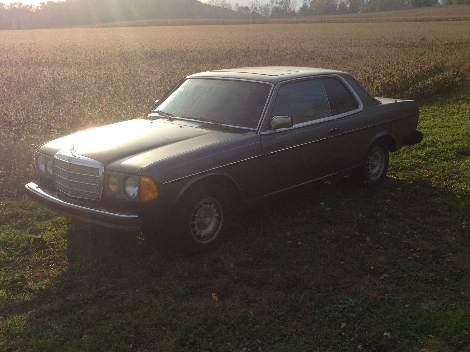 300cd w123 coupe classic mercedes benz 300 series 1985 for Mercedes benz 300 series