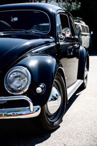 vw bug oval show car black  volkwagen beetle  restoration classic volkswagen