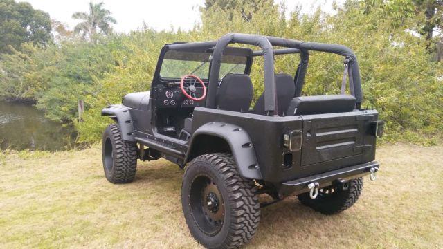 built 39 93 yj 350 350 classic jeep wrangler 1993 for sale. Black Bedroom Furniture Sets. Home Design Ideas