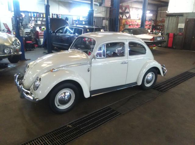 volkswagen beetle 1964 - classic