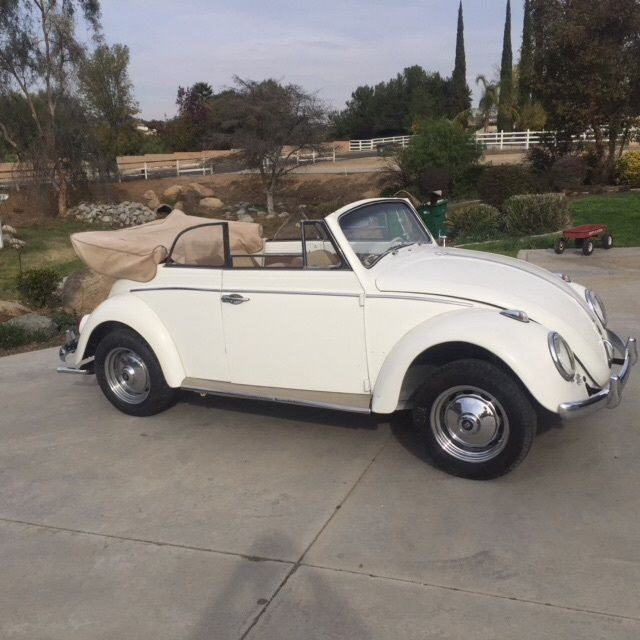 vw bug convertible 1963 classic volkswagen beetle classic 1963 for sale. Black Bedroom Furniture Sets. Home Design Ideas